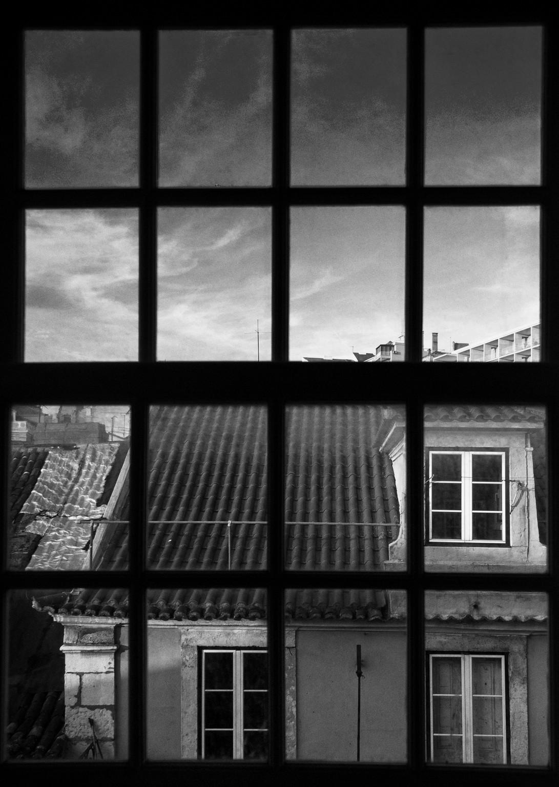 Flavia_Fiengo_Windows00030